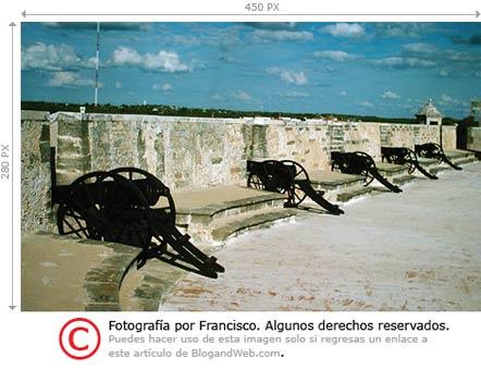 licencia-campeche-css.jpg