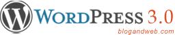 wordpress-3